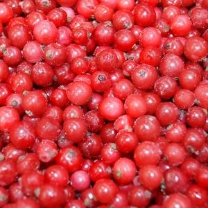 Grosellas rojas congeladas